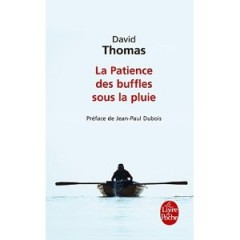 david thomas,humour désenchanté